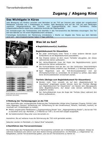 2.2 Zugang_Abgang Rind DE - Qualinova AG