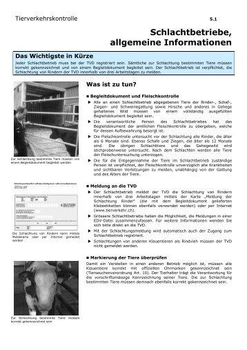 5.1 Schlachtbetriebe_allgemeine Informationen DE - Qualinova AG