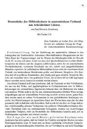 Beutestücke der Höhlenhyänen in anatomischem ... - Quartaer.eu