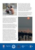 Prayag Magh Mela Research Group - Queen's University Belfast - Page 5