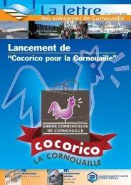 N° 4 - Juin-Juillet 2008 - (CCI) de Quimper Cornouaille