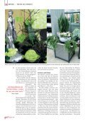 Zimmerpflanzen haben ein Problem: ihren zähen Absatz. Kleine ... - Seite 3