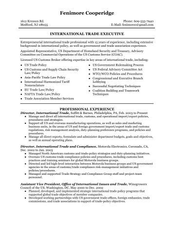 international senior executive 3 page resume sle
