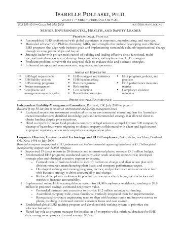 sle senior management resume