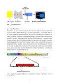 Grundlagen der berührungslosen Temperaturmessung - QZ-online.de - Seite 7