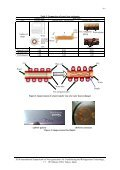 The Development of Heat Pump Water Heaters Using CO2 Refrigerant - Page 6