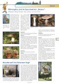 Schlehdorn - auch Schwarz- dorn genannt (Prunus spinosa) - Seite 5