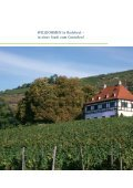 Informationsbroschüre Radebeul -deutsch - Seite 4