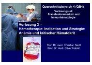 QB4 - Teil 3 - EK Transfusion WS2007
