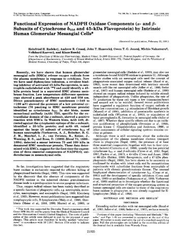 Functional Expression of NADPH Oxidase Components (a- and 8 ...