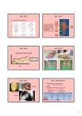 1 Pathogenese-orientierte Therapie rheumatischer Erkrankungen ... - Page 3