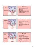 1 Pathogenese-orientierte Therapie rheumatischer Erkrankungen ... - Page 7