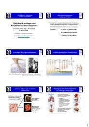 Zelluläre Grundlagen und Netzwerke des Immunsystems: