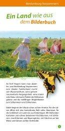 Ein Land wie aus - Tourismusverband Mecklenburg - Vorpommern