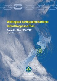 Wellington earthquake national initial response plan 28