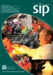 9348 SIP SPRING 2011 - Institute of Physics and Engineering in ...