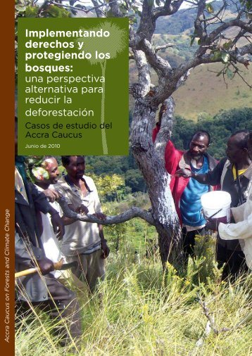 Implementando derechos y protegiendo los bosques: - Rainforest ...