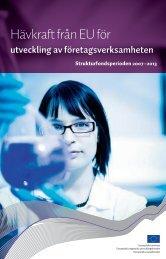 Hävkraft från EU för utveckling av företagsverksamheten (pdf)