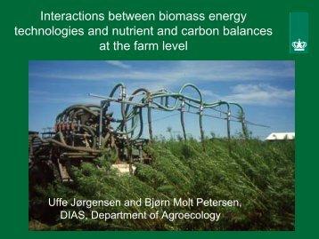 Interactions between biomass energy technologies and ... - Ramiran