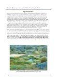 Designación de sitios Ramsar - IUCN - Page 4