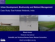Urban Development, Biodiversity and Wetland Management Case ...