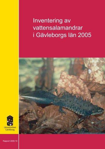 Inventering av vattensalamandrar i Gävleborgs län 2005