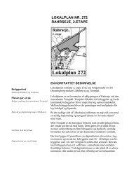 LOKALPLAN NR. 272 RAHRSEJE, 2.ETAPE - Randers Kommune