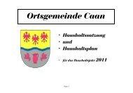 Haushaltssatzung und Haushaltsplan Caan 2011