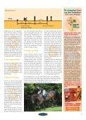 Ausbildung Reitbekleidung Cavaletti & Co. - Euroriding - Page 5