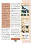Ausbildung Reitbekleidung Cavaletti & Co. - Euroriding - Page 7