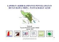 laporan akhir kampanye penyelamatan hutan rawa tripa - RarePlanet