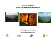 PLAN DE PROYECTO RESERVA DE LA BIOSFERA ... - RarePlanet