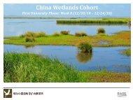 China Wetlands Cohort - RarePlanet