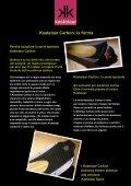 Kastelaar Carbon - Rasc.ru - Page 5