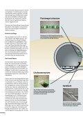 Hier finden Sie die Informationsbroschüre der ... - Stadt Rastatt - Seite 6