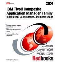 IBM Tivoli Composite Application Manager Family ... - IBM Redbooks