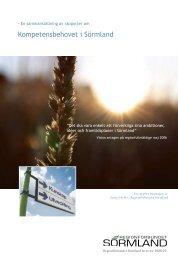 Här kan du läsa rapporten om kompetensbehovet i Sörmland.