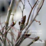 Årsredovisning 2004 (pdf 1,7 MB) - Region Dalarna