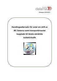 Handlingsalternativ för avtal om drift av BC ... - Region Dalarna