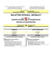 Beiblatt Nr. 1 - Regione Autonoma Trentino-Alto Adige