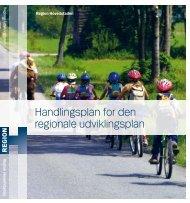 Handlingsplan for den regionale udviklingsplan (2009)