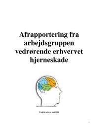 Rapport Arbejdsgruppen vedr. erhvervet hjerneskade - Region ...