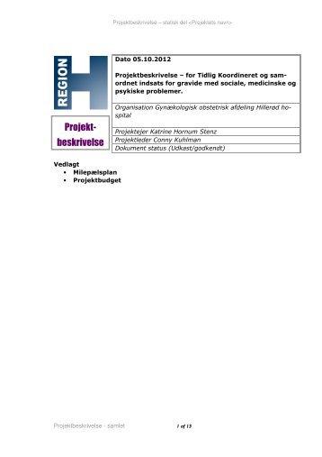 Projekt E - Tidlig koordineret og samordnet indsats for gravide med ...