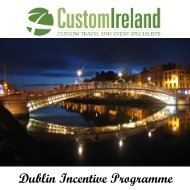 Dublin Incentive Programme - Custom Ireland