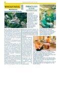 19. November 2006 - Reichenbach - Page 2