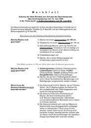 Merkblatt zur Baumschutzsatzung - Stadt Reinbek
