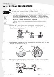 Worksheet: Asexual reproduction