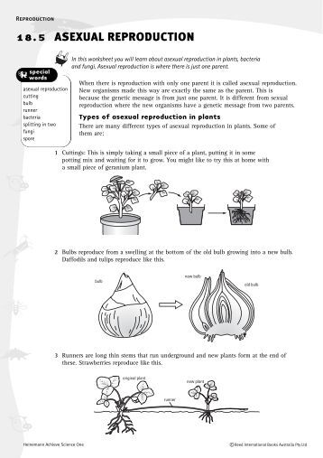 28 plant reproduction worksheet answers plant reproduction quiz 2 by lisa michalek. Black Bedroom Furniture Sets. Home Design Ideas