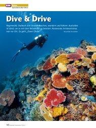 Dive & Drive - Reisemobil Interaktiv