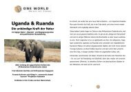 Detailinformation Uganda & Ruanda - die unbändige Kraft der Natur ...